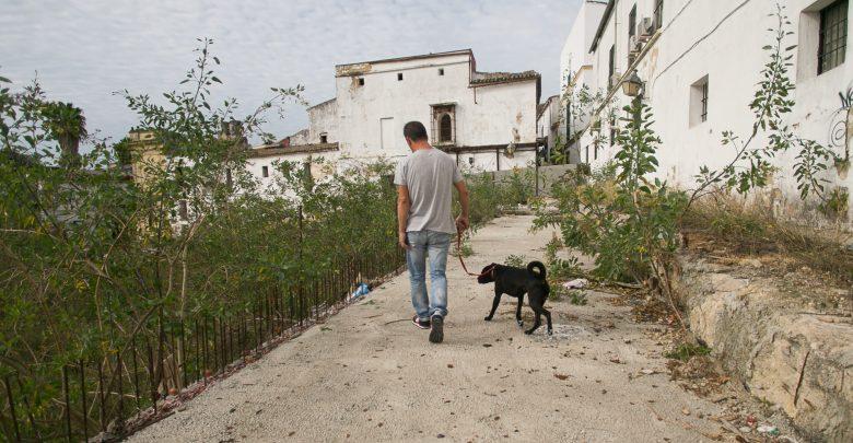 un_vecino_pasea_a_su_perro_en_el_interior_de_las_obras_abandonadas_de_la_ciudad_del_flamenco.jpg