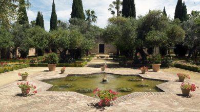 jardines_alcazar_de_jerez_de_la_frontera.jpg