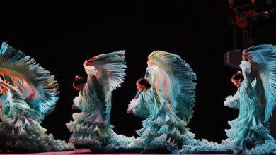 javierfergo_ballet-flamenco_17.jpg