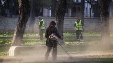 javierfergo_empleo_02.jpg