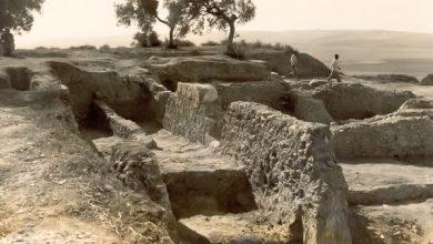 astaregia_1_-_trabajos_en_asta_regia_a_mediados_del_siglo_pasado_foto_del_museo_arqueologico_de_jerez.jpg