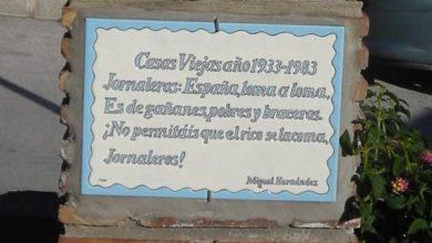azulejo_hoy.jpg