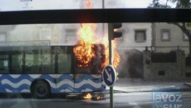 autobuses-1024x7681.jpg