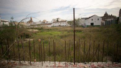 ciudad_del_flamenco-14.jpg