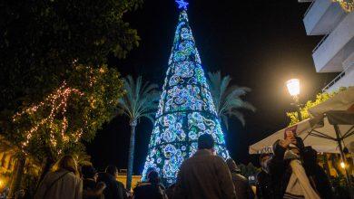 alumbrado_navidad-15.jpg