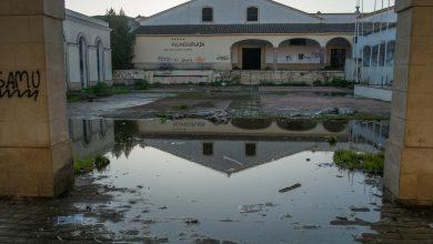hotel_palmera_plaza-1.jpg