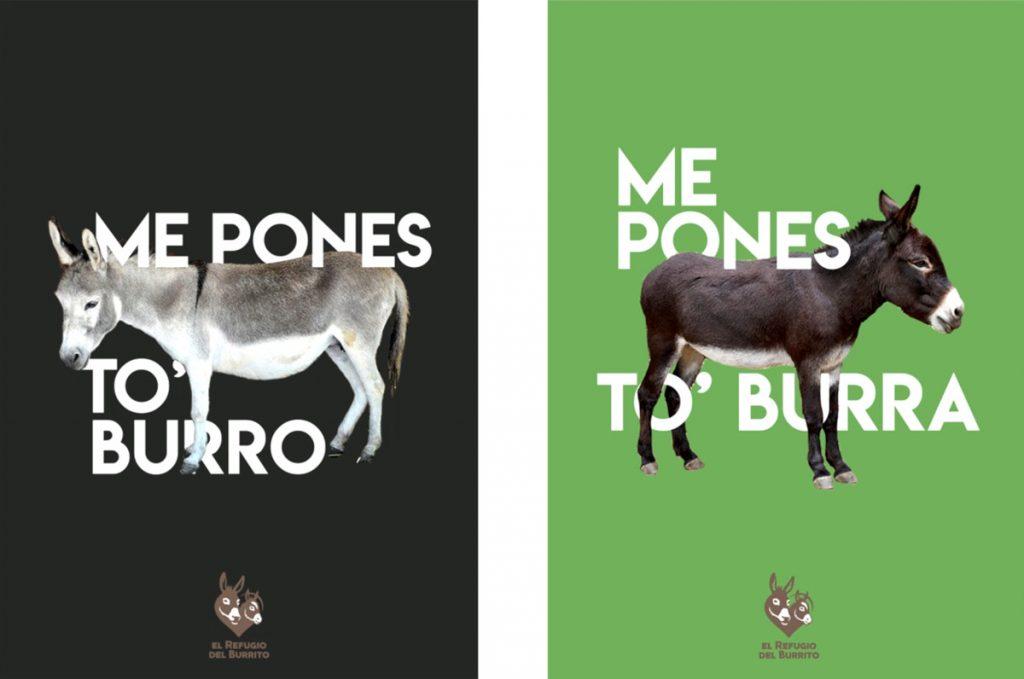 Una de las campañas, que juega con algunas expresiones y refranes relacionadas con estos animales.